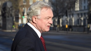 Brexit Secretary David Davis described the vote as 'disappointing'