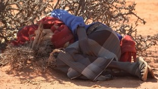 Cornish charity Shelterbox in Somaliland as it faces 'savage' drought