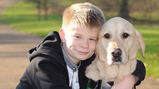 Autistic boy hoping his 'guardian angel' dog wins hero prize at Crufts