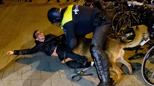 A Dutch riot policeman tries to get his dog to let go of a man.