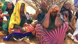 Fighting Famine: Midlands projects providing support