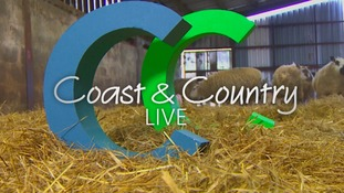 coast and country live