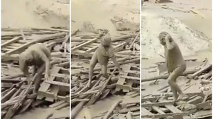 Incredible moment woman escapes raging mudslide in Peru