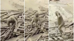 The woman climbs out from under debris in the raging mudslide