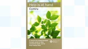 Help is at Hand handbook