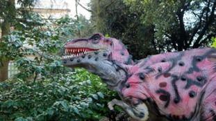 Nottingham City Council is embarking on a search for somebody who has the 'Dino-Factor'.