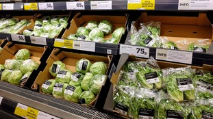 Shock weather conditions that ravaged crops saw the price of iceberg lettuces jump 67.2% between January and February.
