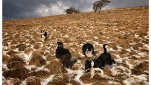 Weather: A burst of winter