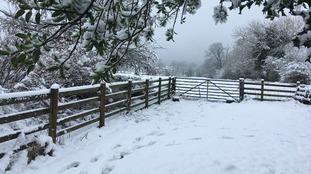 Snow in Newbiggin.