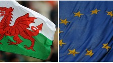 Welsh and EU flags