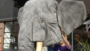 The giant animatronic elephant head hoping to put a stamp on conservation