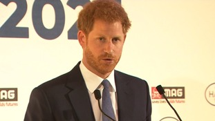 Prince Harry's landmine speech a touching tribute to Diana