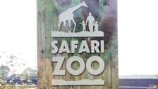 South Lakes Safari Zoo.
