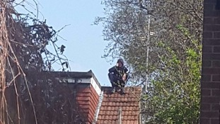 Moped rider suspected of crashing into a police car hides on roof of nearby house