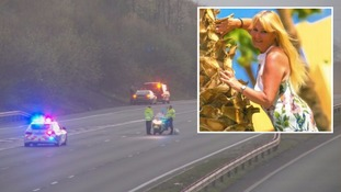 Woman killed 'chasing dog' which escaped onto motorway is named