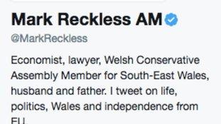 Mark Reckless twitter bio