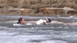 Man jumps into frozen water to save his dog