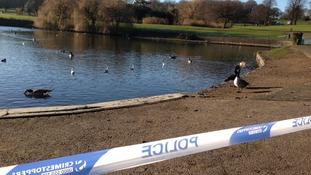 Scene at Sandwell Park