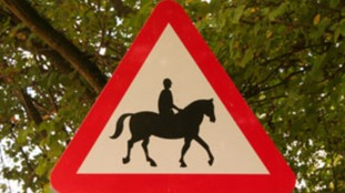Charity asks road users to THINK! when overtaking horses