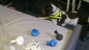 Police dogs were involved in the search of the property.