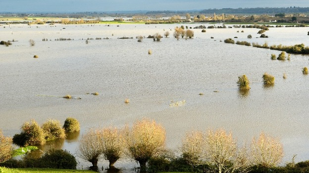 Floodwater in Somerset yesterday.