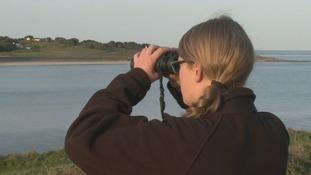 A woman using binoculars
