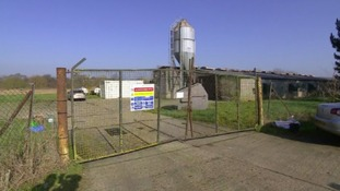 A highly pathogenic strain of the virus was found at Bridge Farm in Redgrave near Suffolk.