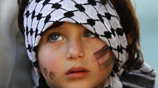 A child during a rally supporting the resolution to change the Palestinian Authority's UN observer status to 'non-member state'.