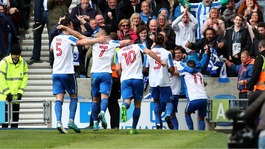 They're up! Seagulls flying high as Brighton & Hove Albion soar to the top flight