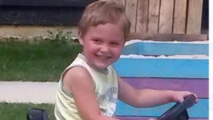 Woman admits dangerous dog charge over death of three-year-old boy