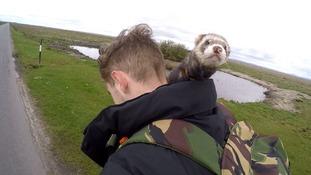 Ipswich man walks Hadrian's Wall with pet ferret