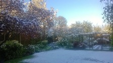 Chris and Jackie sent us this photo of their back garden in Staffordshire