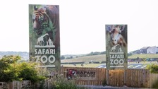 The South Lakes Safari Zoo was raided by animal welfare officers investigating 'historic offences', it emerged today.