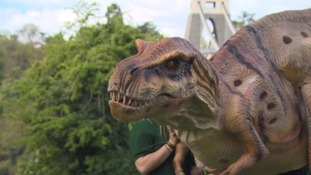 Dinosaur appears on the Clifton Suspension Bridge!