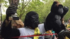 'Gorilla man' completes London Marathon after six days