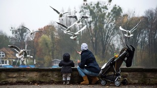 File photo of a mother and child feed seagulls.