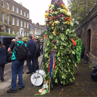 Man dressed as a tree