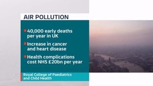 Air pollution causes thousands of premature deaths in the UK every year.