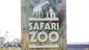 Licence application for zoo where 500 animals died