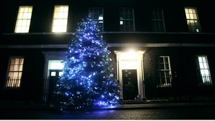 The Downing Street Christmas tree
