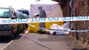 Murder investigation after man killed in assault