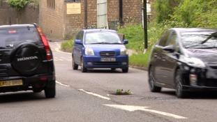 Flowers filling a pothole