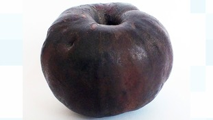 2,000 year-old apple to feature at antiques fair in Leeds