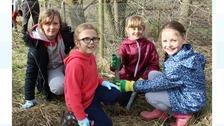 St Aidan's schoolchildren planting trees