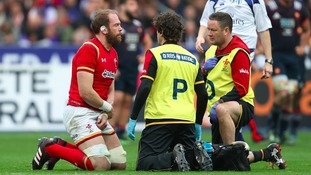 Alun Wyn Jones on the pitch after his injury