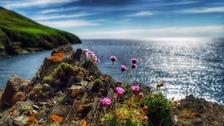 Peel, Isle of Man SUSIE MacKENZIE-FIDLIN