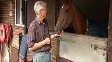 Top horse racing trainer offers reward to clear his name