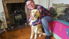 Blind man refused job over guide dog offered dream role