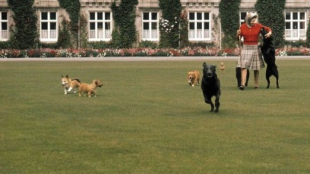 The Queen with her dogs in front of Balmoral Castle