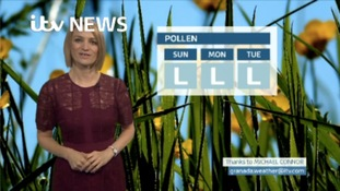 VIDEO: Saturday's pollen forecast for the North East
